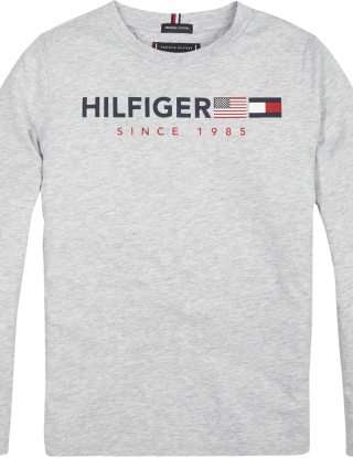 TOMMY HILFIGER T-shirt L/S Flags graphic - Grijs